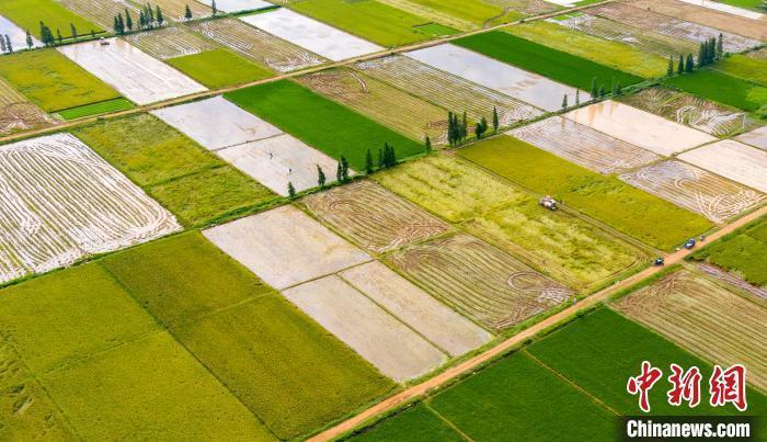 财政部:将高标准农田建设作为重点领域予以保障