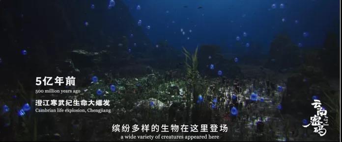 COP15宣传片《云南密码》片段