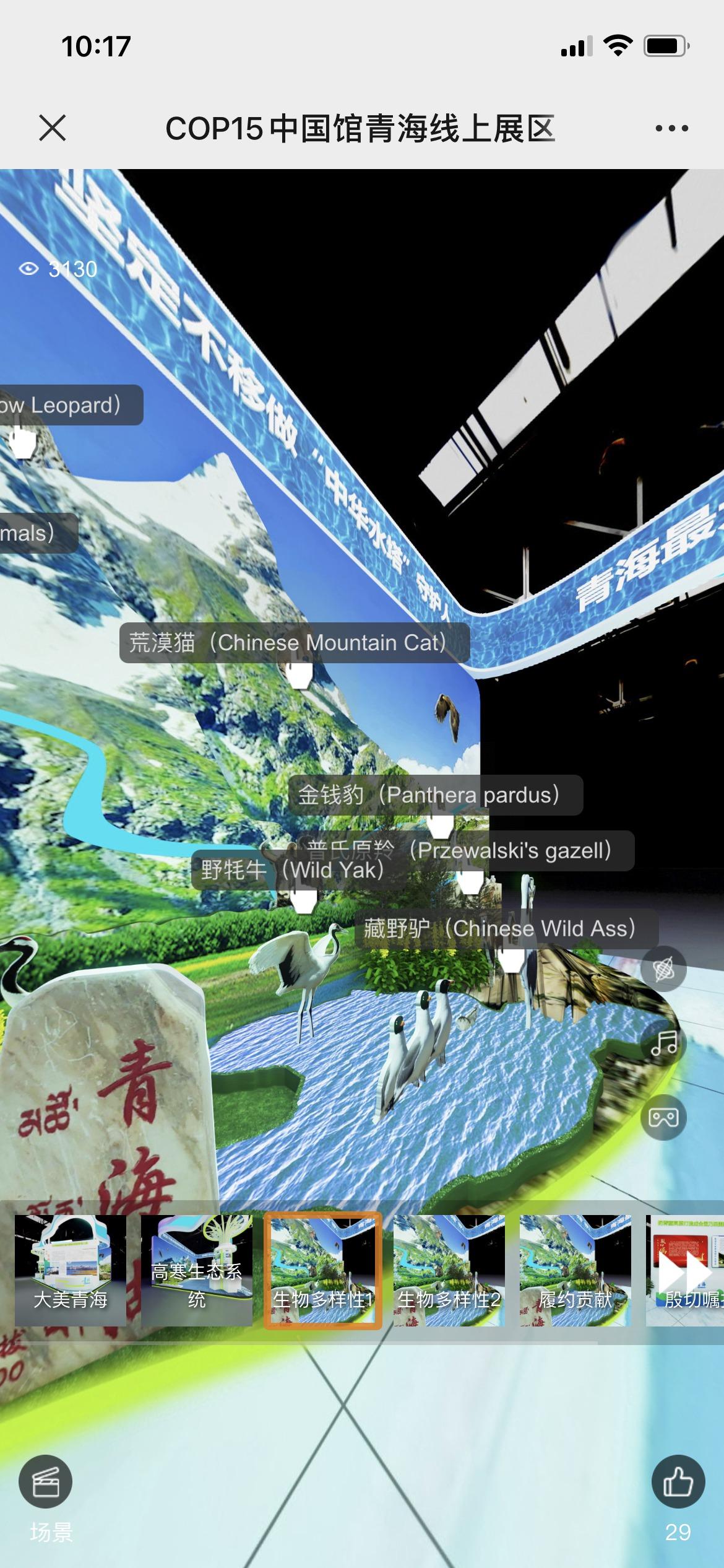 图为手机端线上青海展区。孙睿 摄