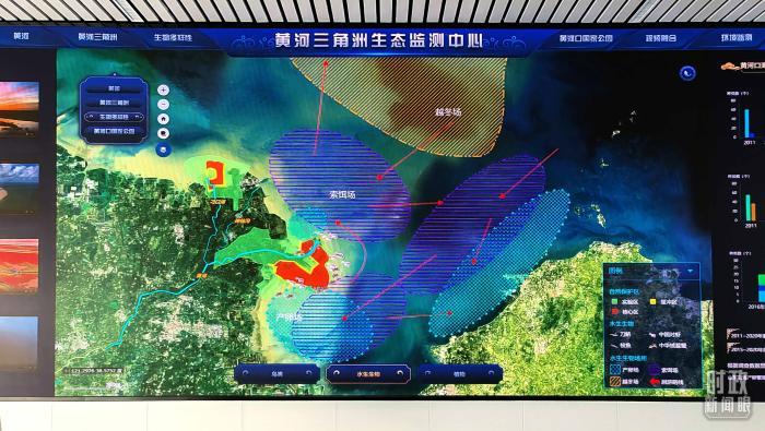 △�O�y中心大屏幕正在�@示�S河三角洲水生生物�鏊�,包括�a卵��、索�D��、越冬��。(��_央��者彭�h明拍�z)