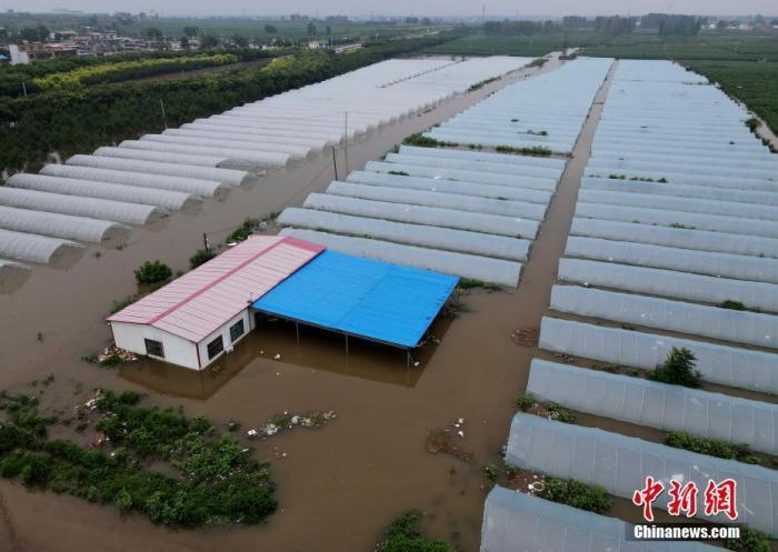 资料图:被淹的大棚。 中新社记者 邹浩 摄