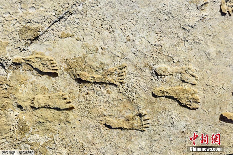 美国公布最古老人类脚印 距今约23000年