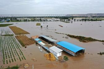 Apple CEO announces donation to flooded areas of Shanxi