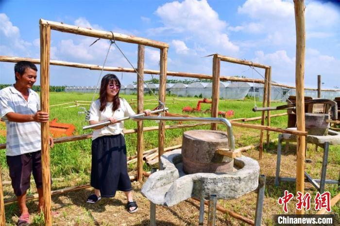 游客在广州增城区石滩万亩生态农业园区的世界幸福田园学习使用石磨 曾令华 摄
