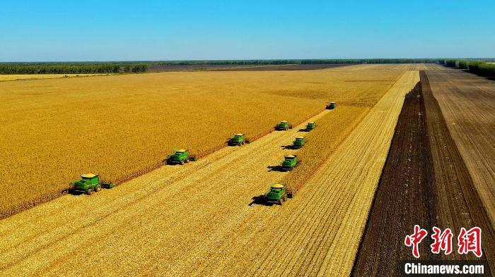 """我国粮食生产""""国家队""""秋收告捷粮食总产量将超460亿斤"""